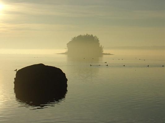 Cutts island 10