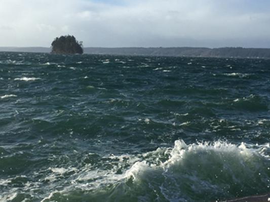 Cutts island 9