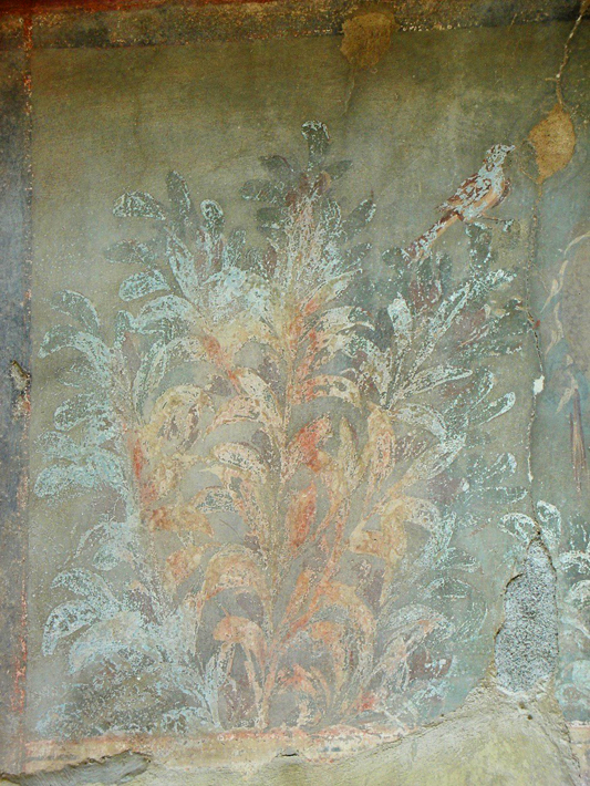 Herculaneum wall 2