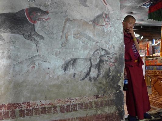 Ladakh wall