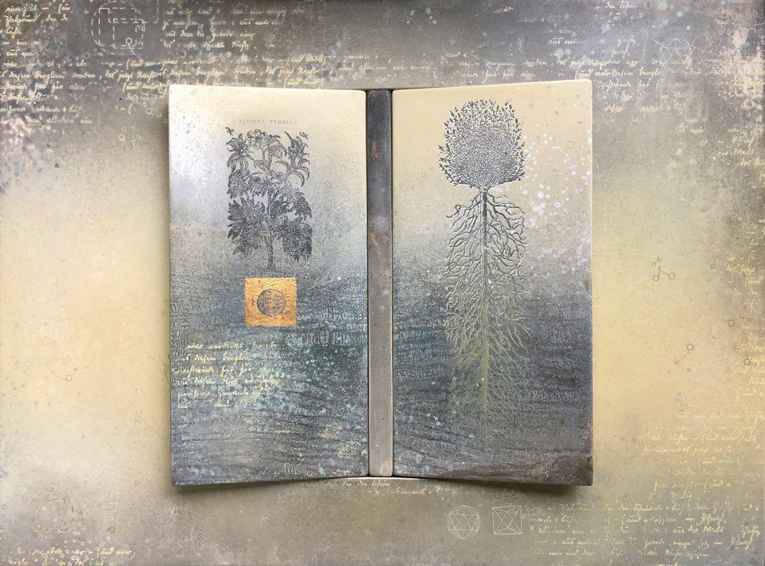 image book-of-commons-liber-naturalium-jpg