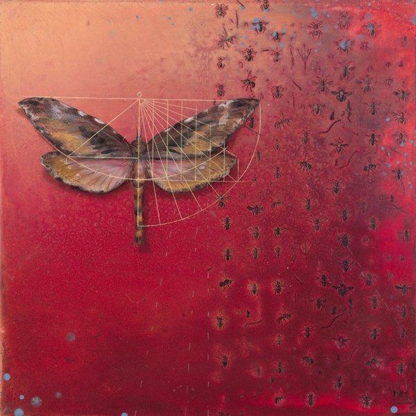 image ps26-moth-jpg
