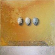image 11-ex-libris-3-eggs-bird-jpg